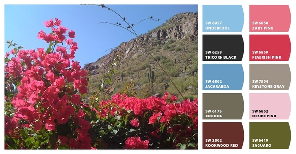 Scottsdale color palette