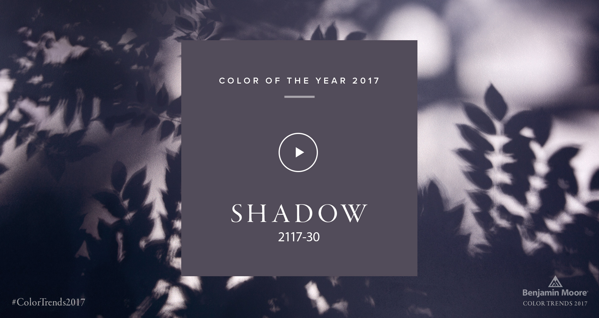 """Benjamin Moore 2017 Color of the Year """"Shadow"""" 